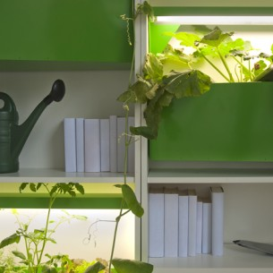 The Parasite Farm consists of an indoor compost system that can be hung on your kitchen table and illumined plant boxes which fit perfectly in a bookshelf...