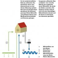 Infografik_hellblau13