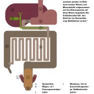 Infografik_hellblau2